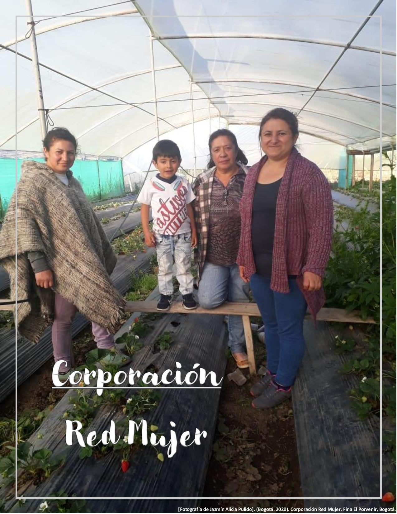 Hoja de resumen Corporación Red Mujer 2020-I