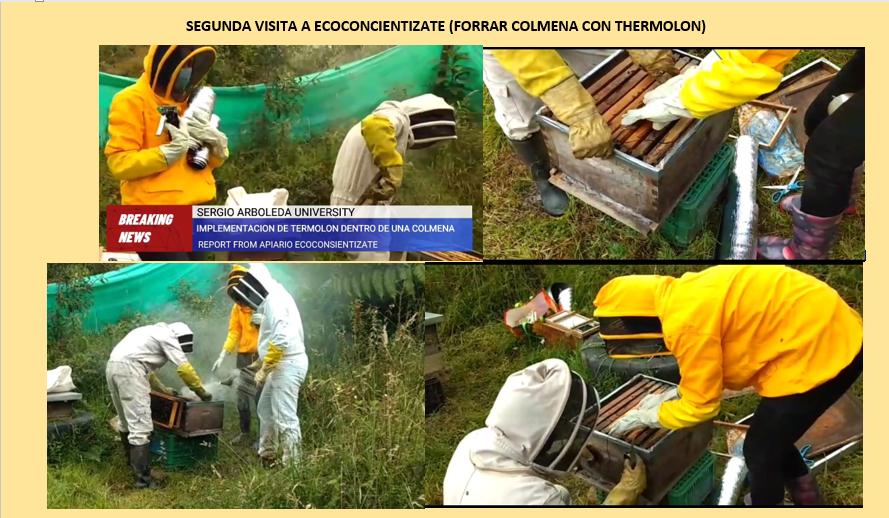 Hoja de resumen Ecoconcientizate 2021-I