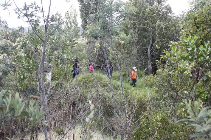 Reserva Natural Montiel