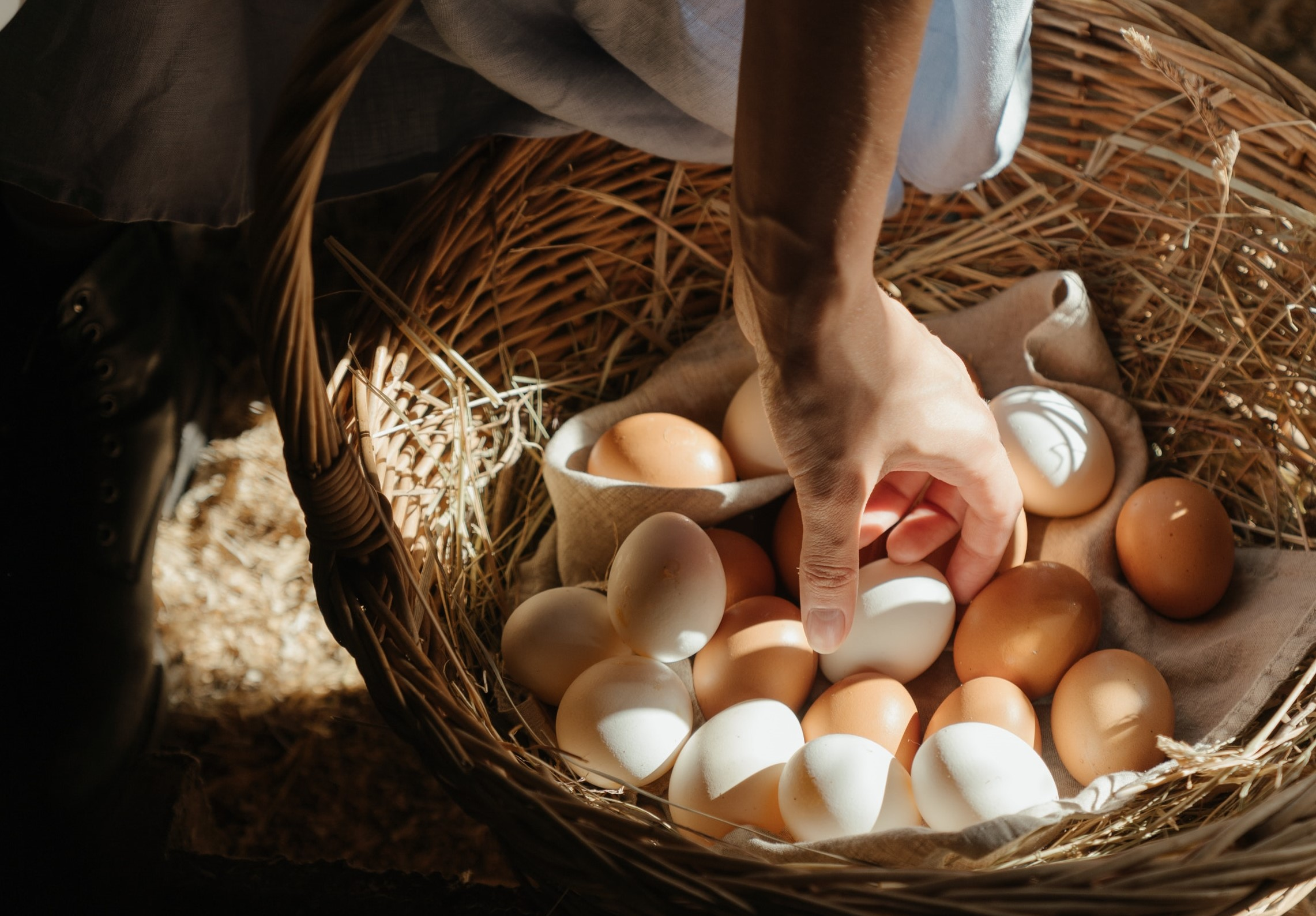 Huevos El Campesino