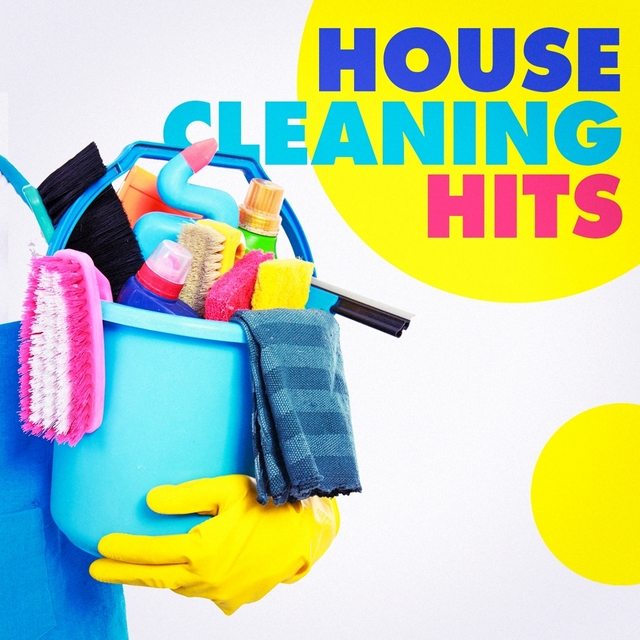 Couverture de House Cleaning Hits