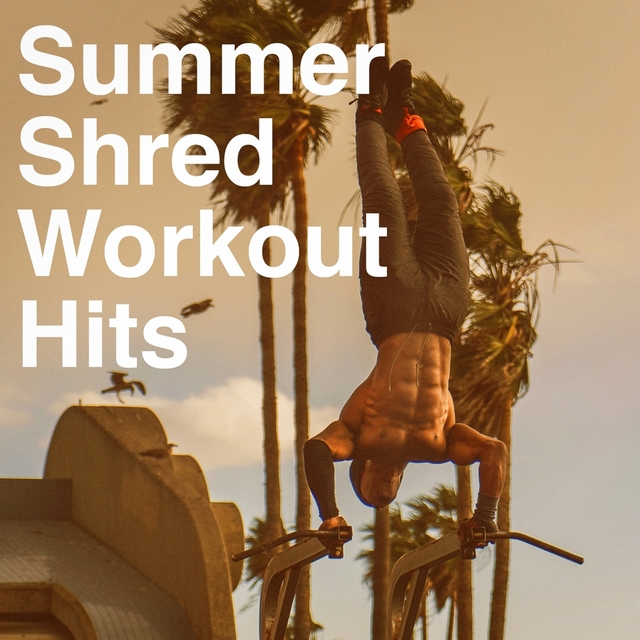 Summer Shred Workout Hits