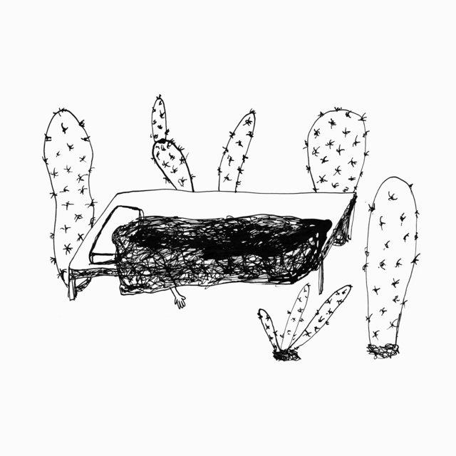 Couverture de Songs for Plants