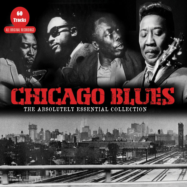 Couverture de Chicago Blues - the Absolutely Essential Collection