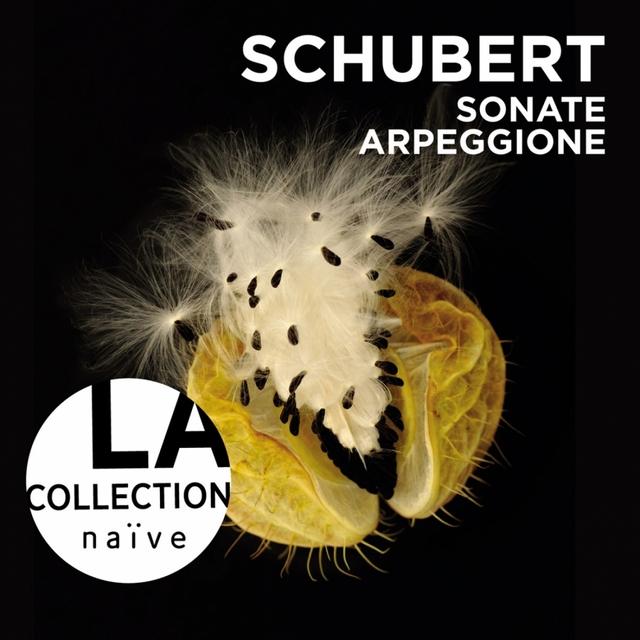 Schubert: Sonate Arpeggione