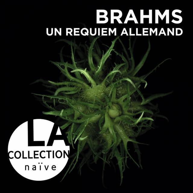 Brahms: Un requiem allemand, Op. 45