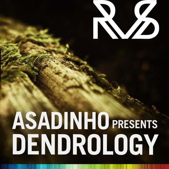Asadinho Presents Dendrology