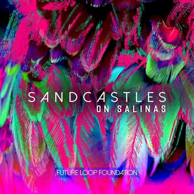 Sandcastles on Salinas