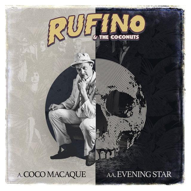 Coco Macaque / Evening Star
