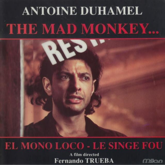 Le singe fou