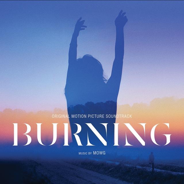 Couverture de Burning