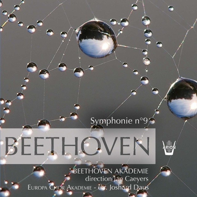 Beethoven : Symphonies No 9, Vol. 3