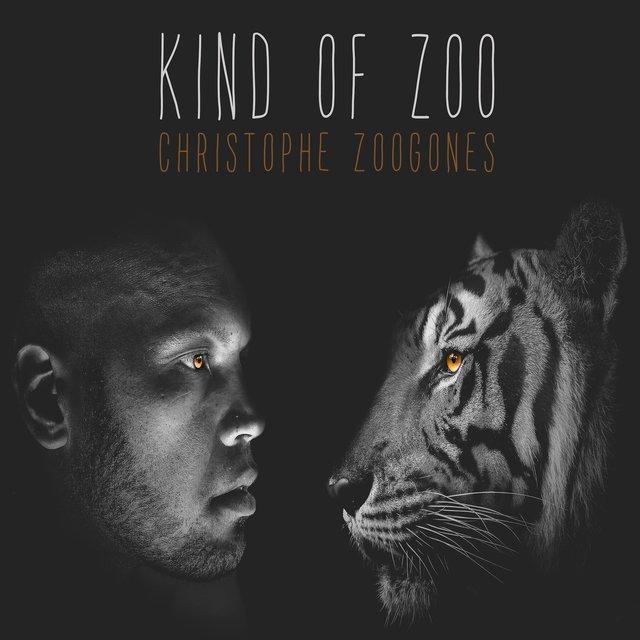 Kind of Zoo