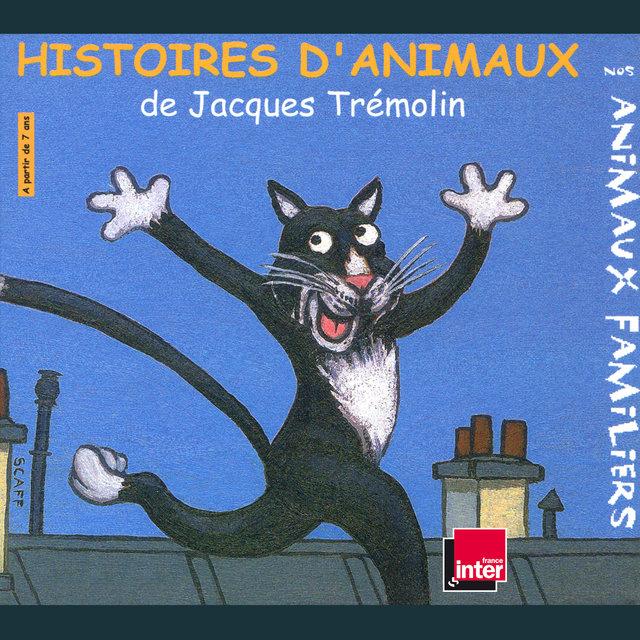 Histoires d'animaux: Nos animaux familiers (À partir de 7 ans)