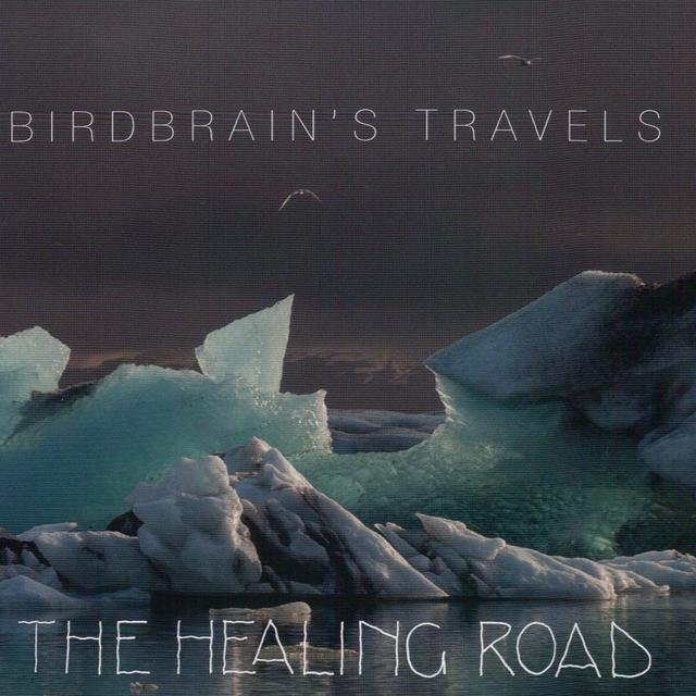 Birdbrain's Travels