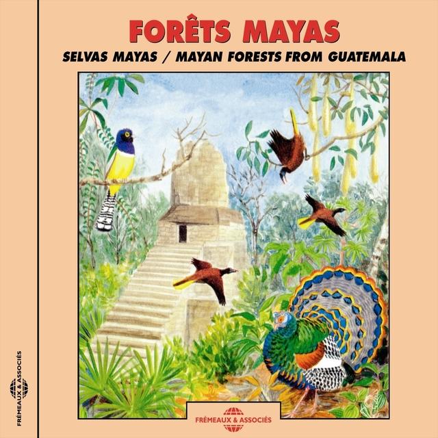 Forêts Maya