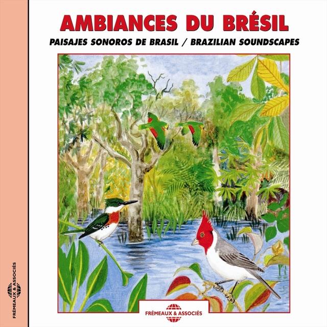 Ambiances du Brésil - Brazilian Soundscapes