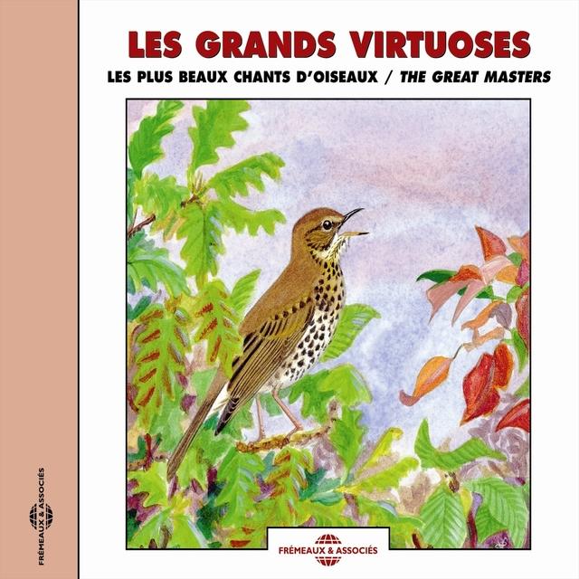 Les plus beaux chants d'oiseaux - Birds Great Masters