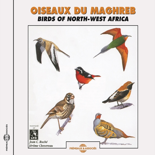 Oiseaux du Maghreb/Birds of North-West Africa