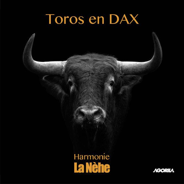 Toros en Dax