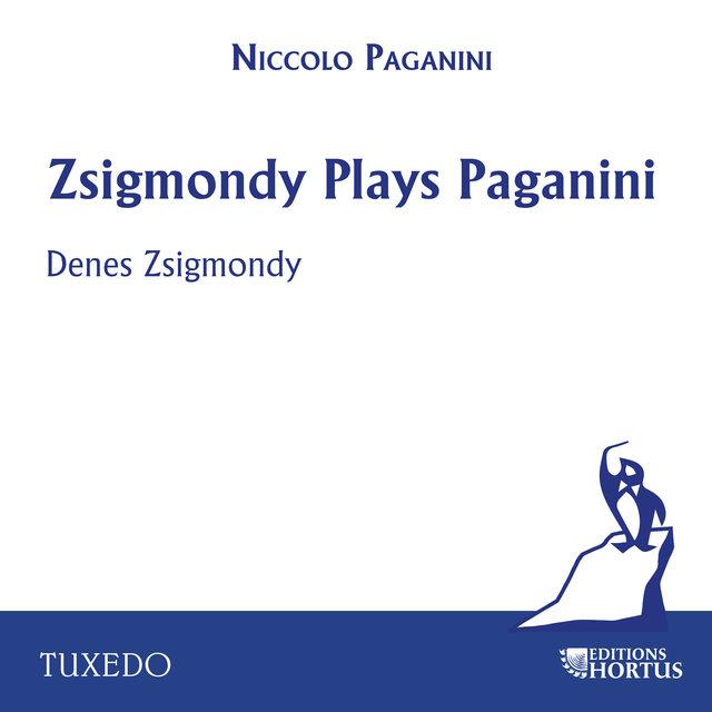 Zsigmondy Plays Paganini