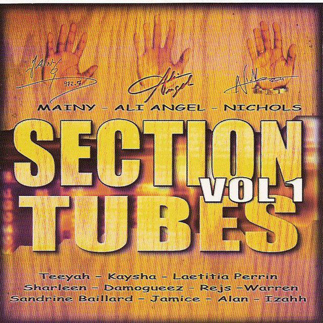Section tubes zouk, Vol. 1