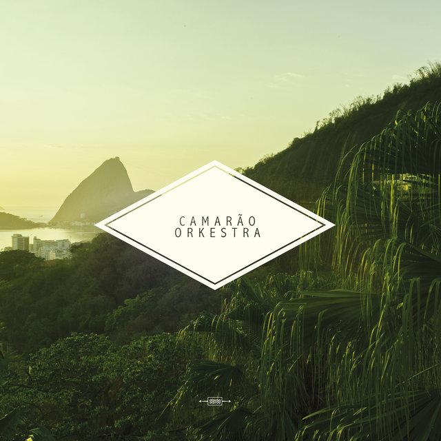 Couverture de Camarão Orkestra