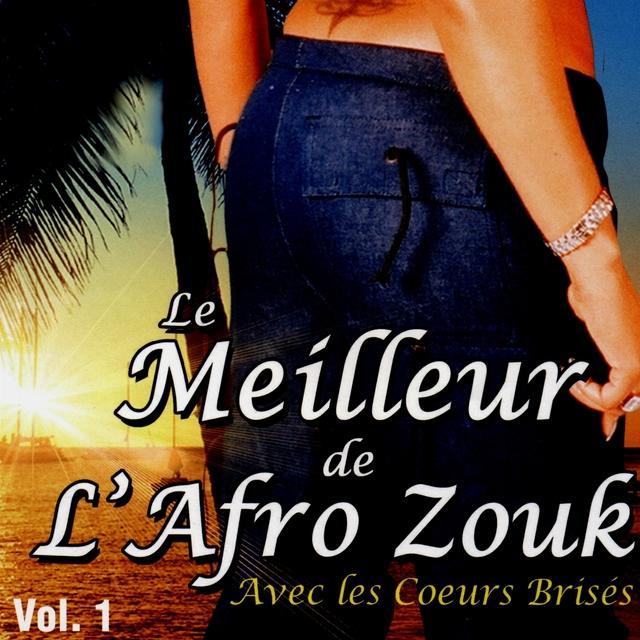 Le meilleur de l'afro-zouk, vol. 1
