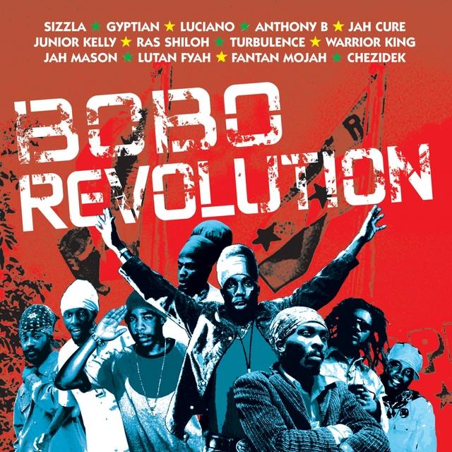 Couverture de Bobo Revolution