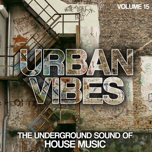 Urban Vibes, Vol. 15