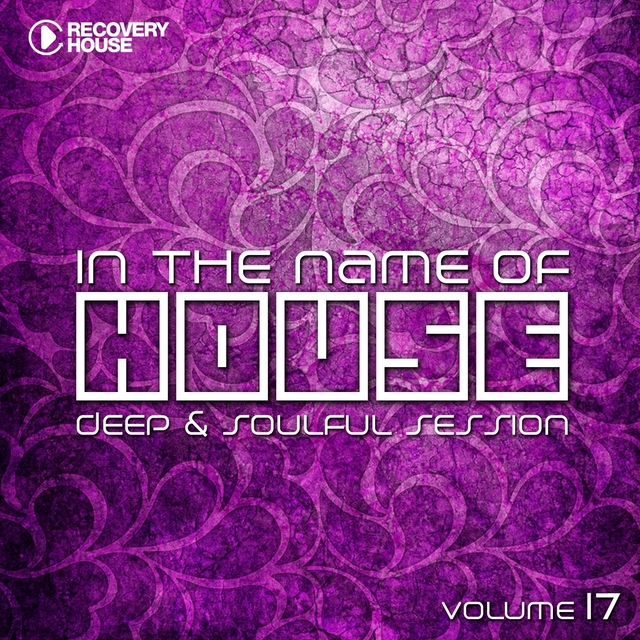 In the Name of House, Vol. 17