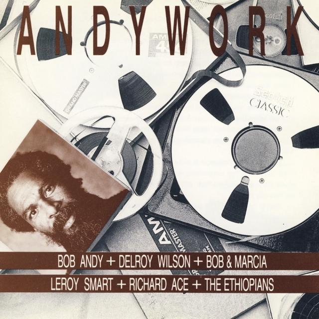 Couverture de Andywork