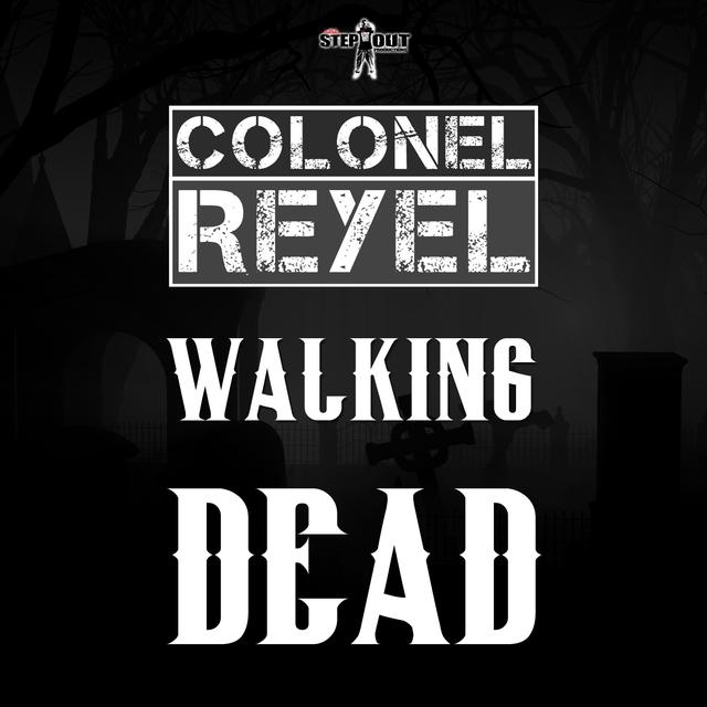 Couverture de Walking Dead