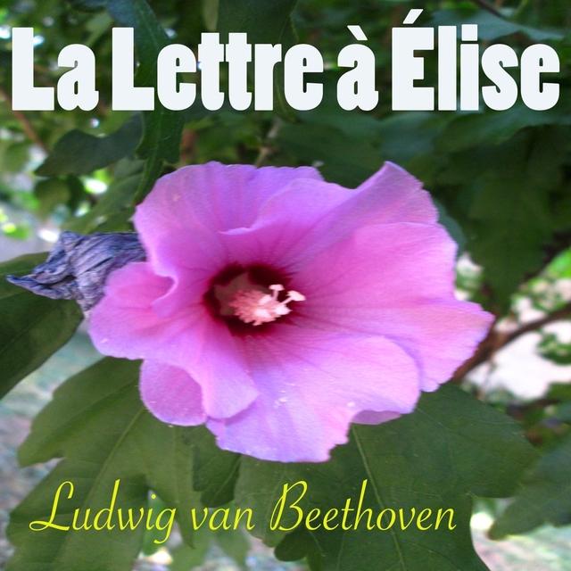 Beethoven: La lettre à Elise, WoO 59
