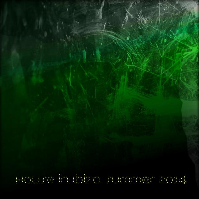 House in Ibiza Summer 2014