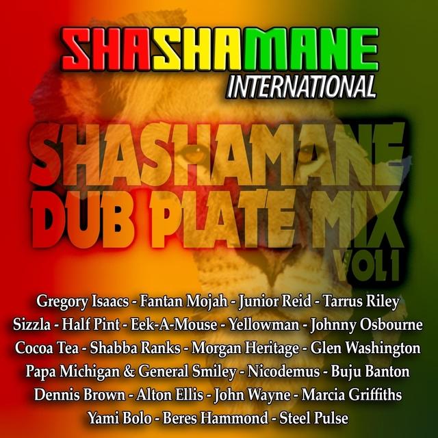 Couverture de Shashamane Dub Plate Mix, Vol. 1