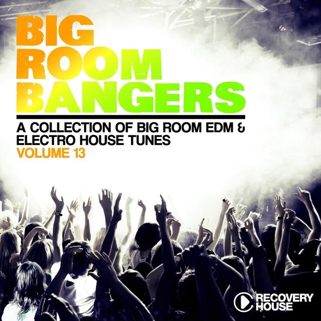 Big Room Bangers, Vol. 13