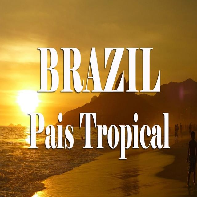 The Best Of Brasil Music