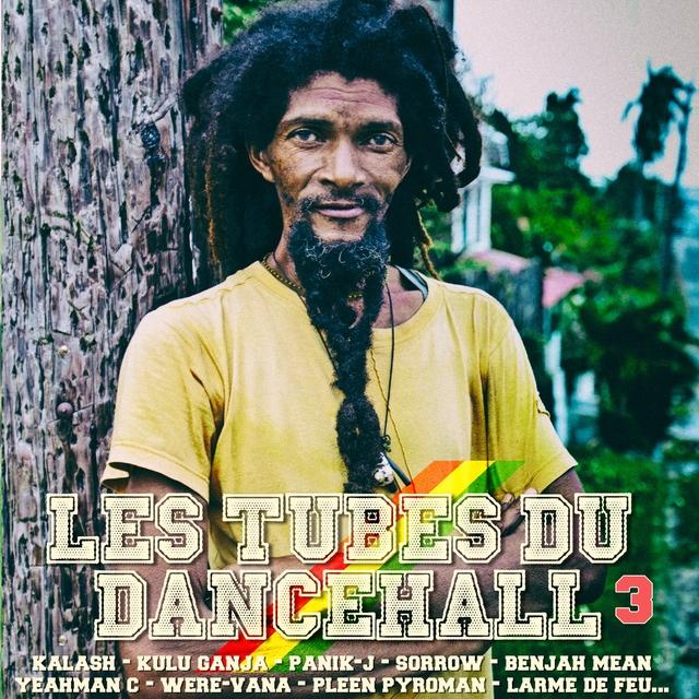 Les tubes du Dancehall, vol. 3