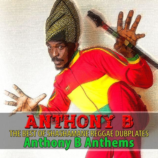 Couverture de The Best of Shashamane Reggae Dubplates