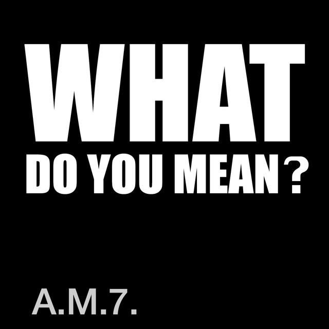 Couverture de What Do You Mean?