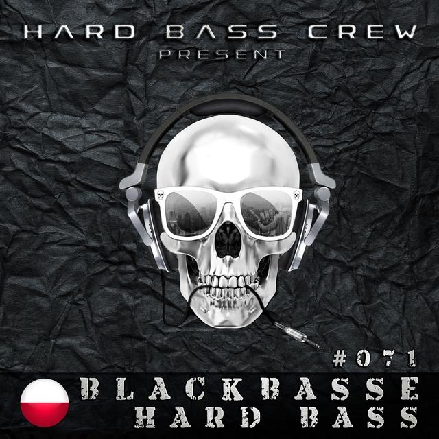 Couverture de Hard Bass