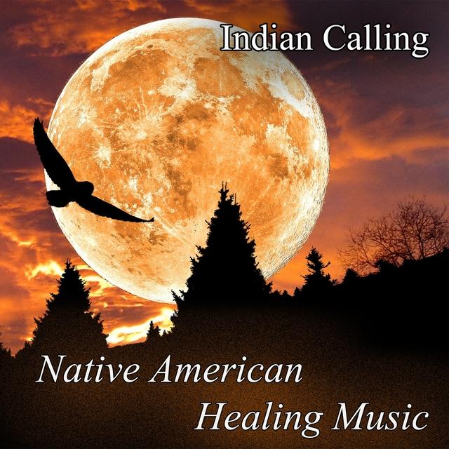 Native American Healing Music