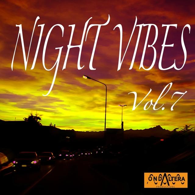Night Vibes, Vol. 7