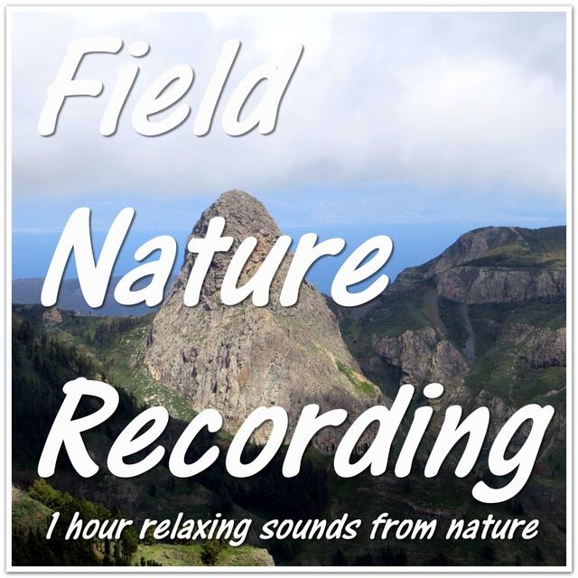Field Nature Recording