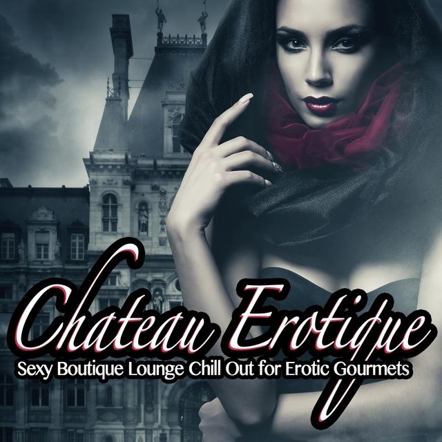 Couverture de Chateau Erotique, Vol.1