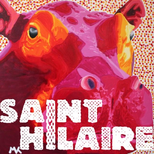 Couverture de Saint Hilaire