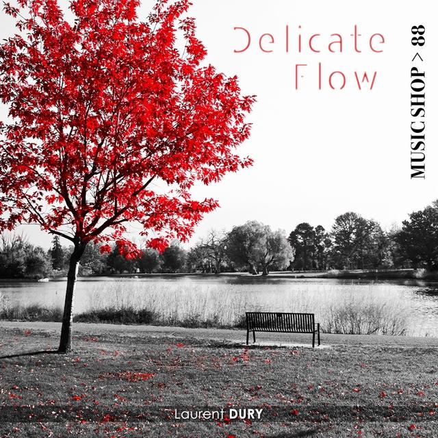 Couverture de Delicate Flow
