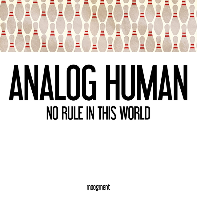 No Rule in This World