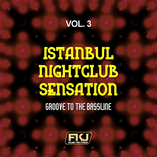 Istanbul Nightclub Sensation, Vol. 3 (Groove to the Bassline)